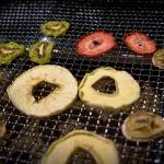 """Klarstein """"Fruit Jerky Pro 10"""" Dörrautomat im Test"""
