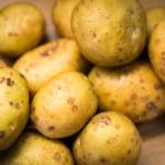 Kartoffeln festkochend